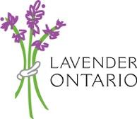 Lavender Ontario