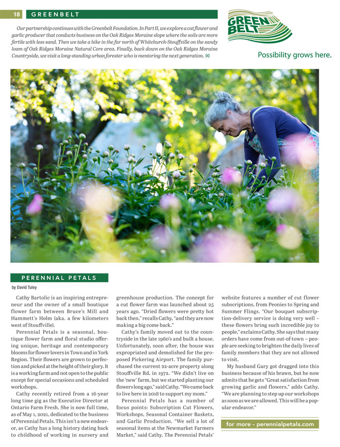 Article about Perennial Petals